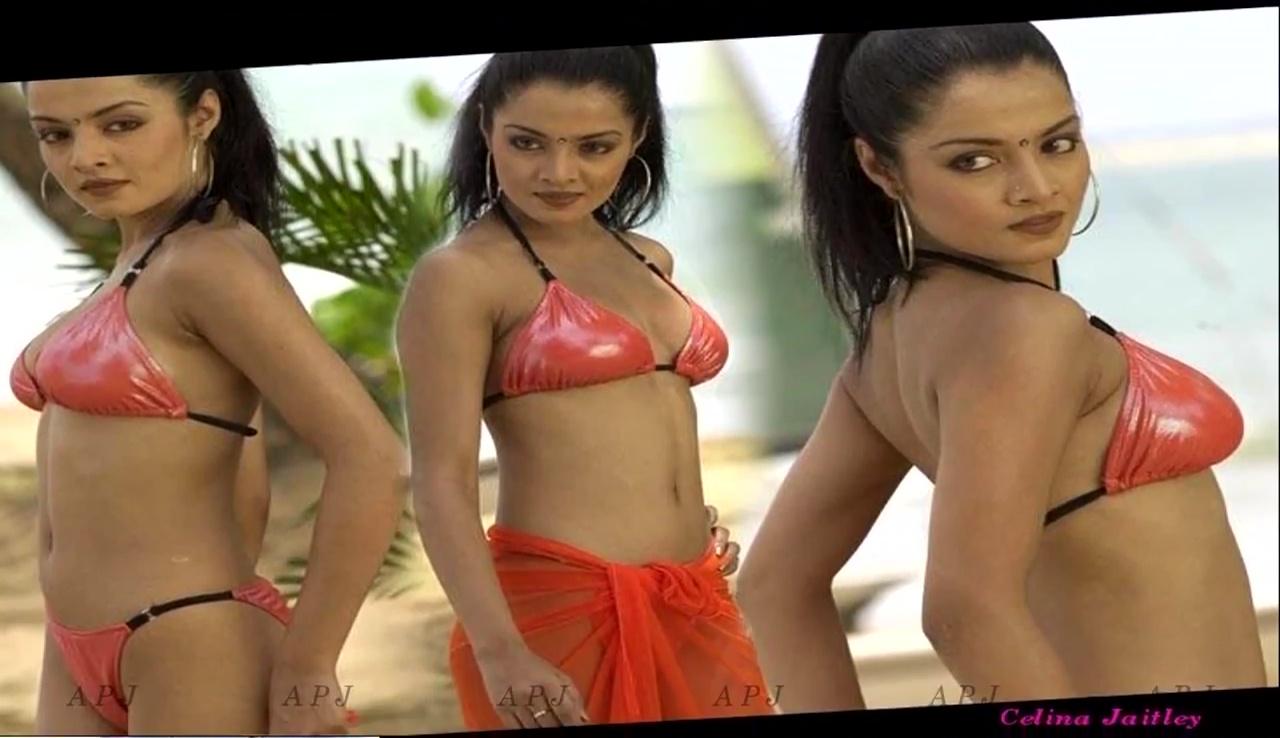 Celina Jaitley Bollywood Actress Hot two piece Photo 8