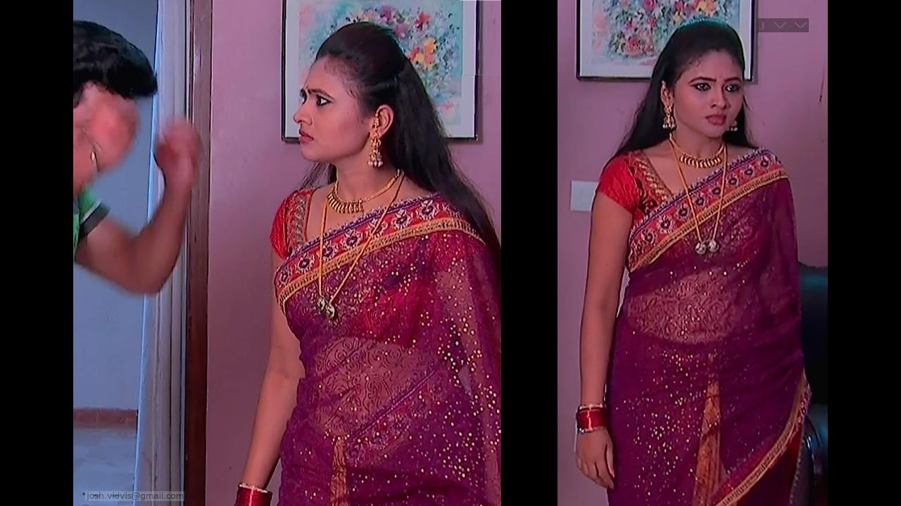 Telugu TV Actress_SVSC_01_Hot Saree Pics