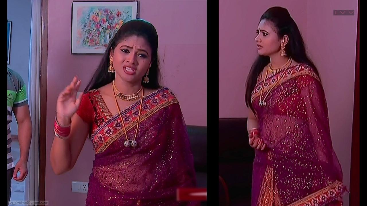 Telugu TV Actress_SVSC_02_Hot Saree Pics