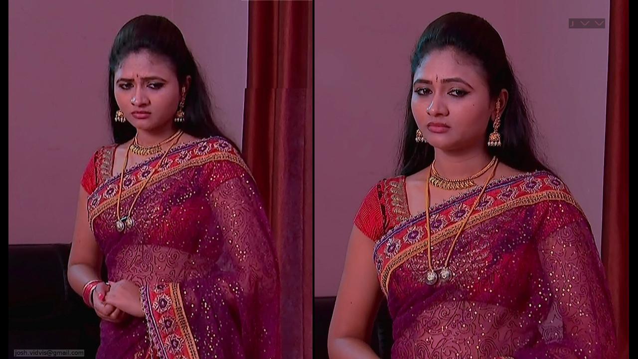 Telugu TV Actress_SVSC_03_Hot Saree Pics