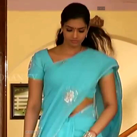 Krithika_Tami TV _09_hot saree navel caps