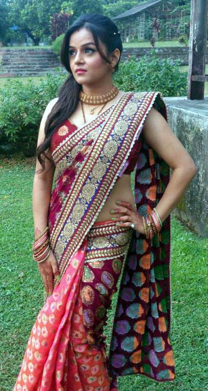 Jayshree Soni_TV Actress Hot Pics Gallery_14
