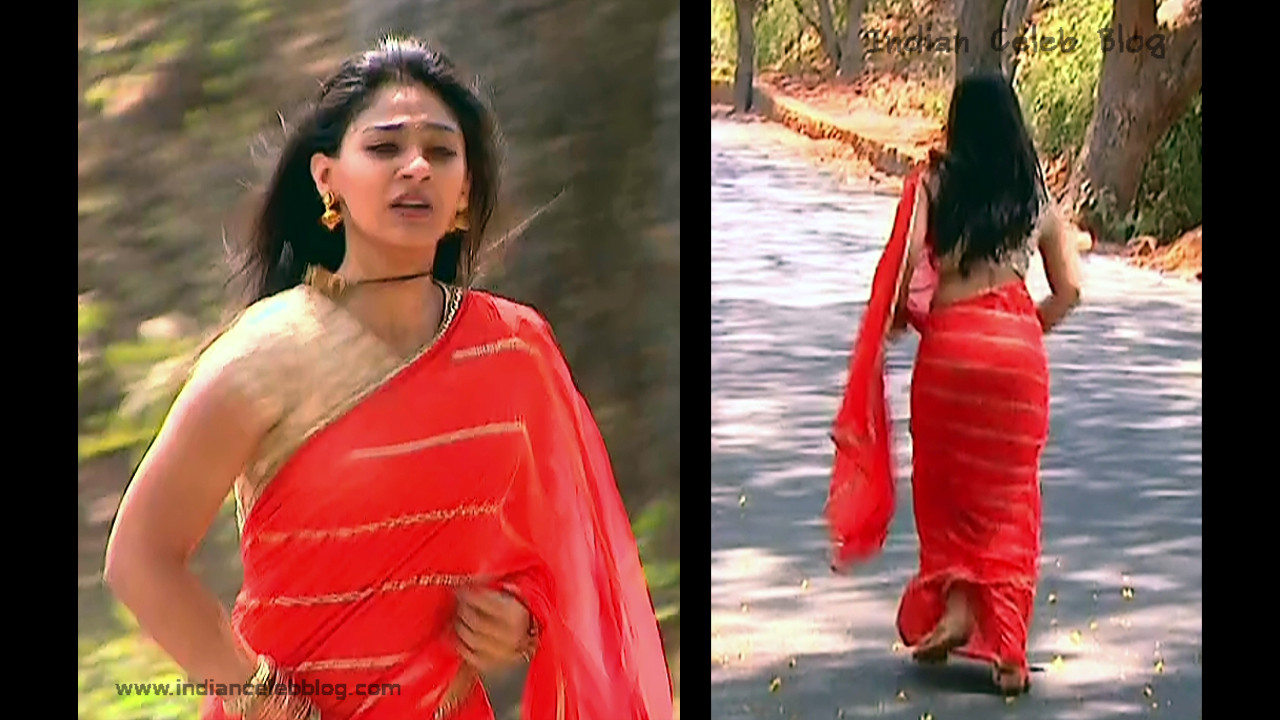 Vidhi Pandya_Hindi TV Actress_07_Hot Saree Pics
