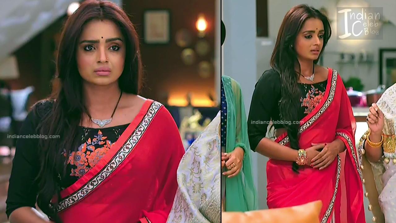 Parul Chauhan_Hindi TV Actress_13_Hot Saree photo