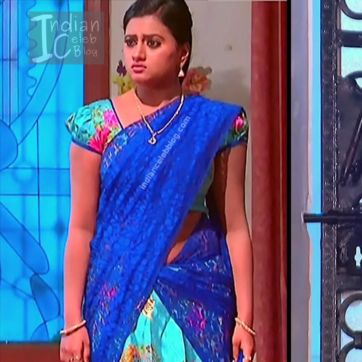 Telugu TV Actress_12_Hot Saree Pic