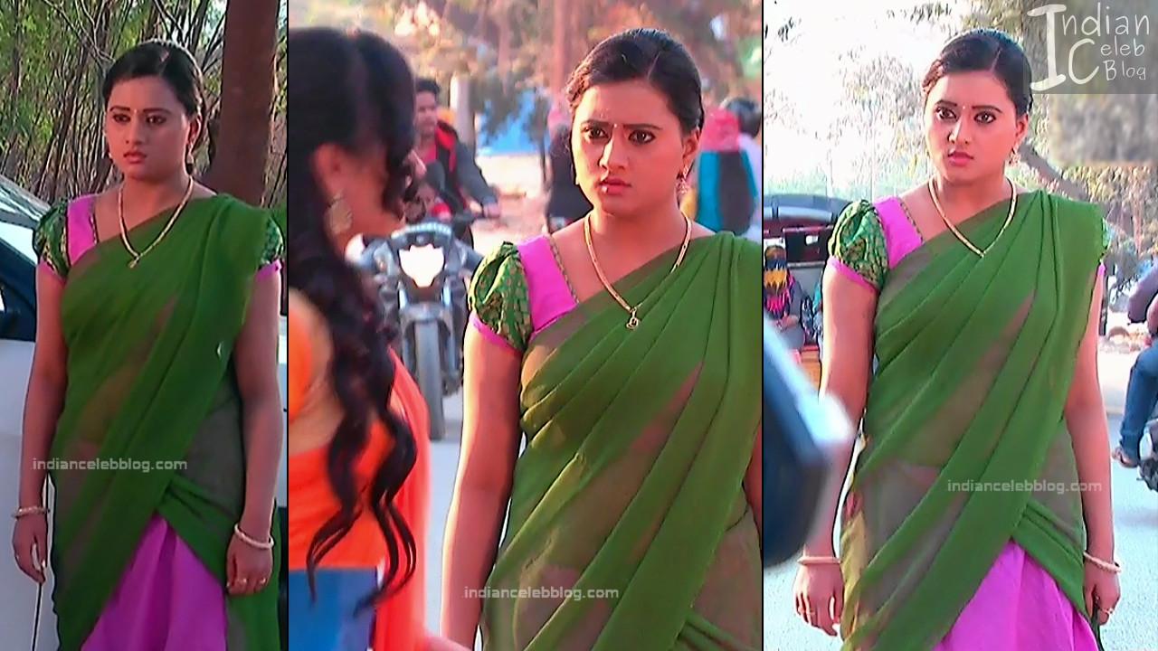 Telugu TV Actress_2_Hot Saree Pic