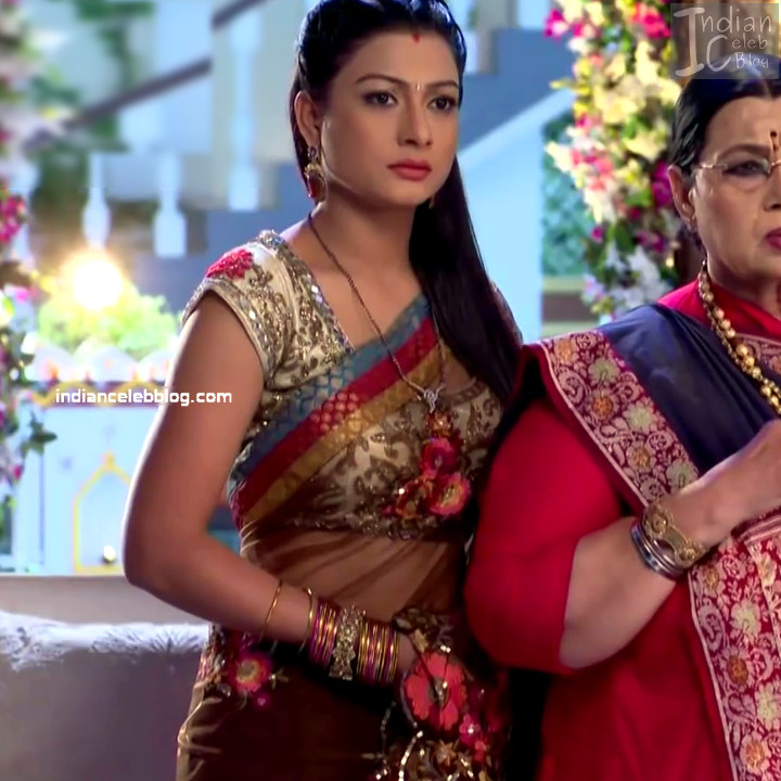 Aalika Sheikh_Hindi TV Actress TumhiHBST S1_11_Hot Sari Pics