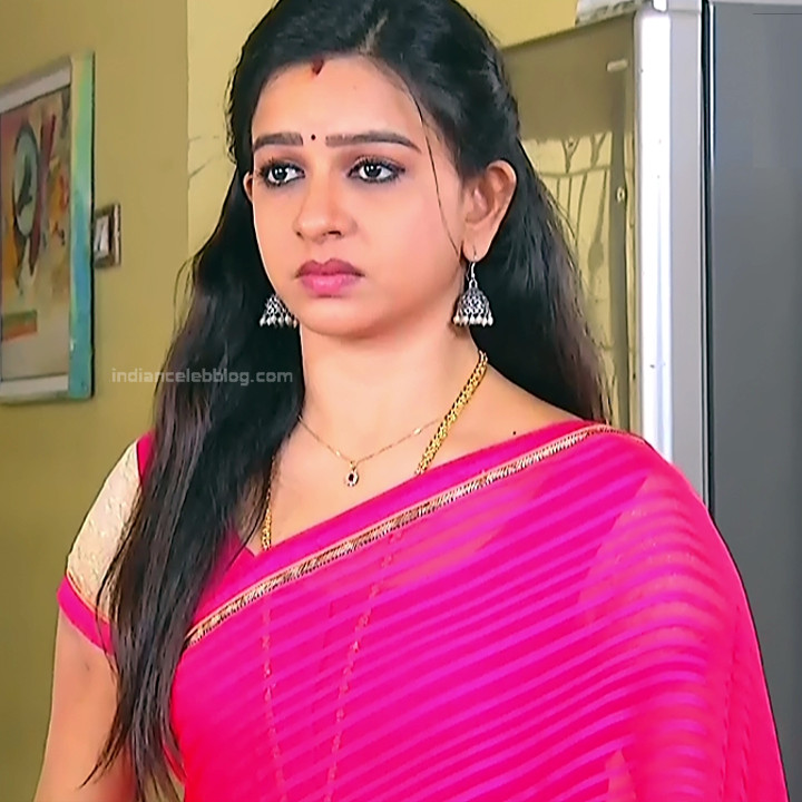 Divya_Tamil TV Actress SMG-S2_12_Saree photo