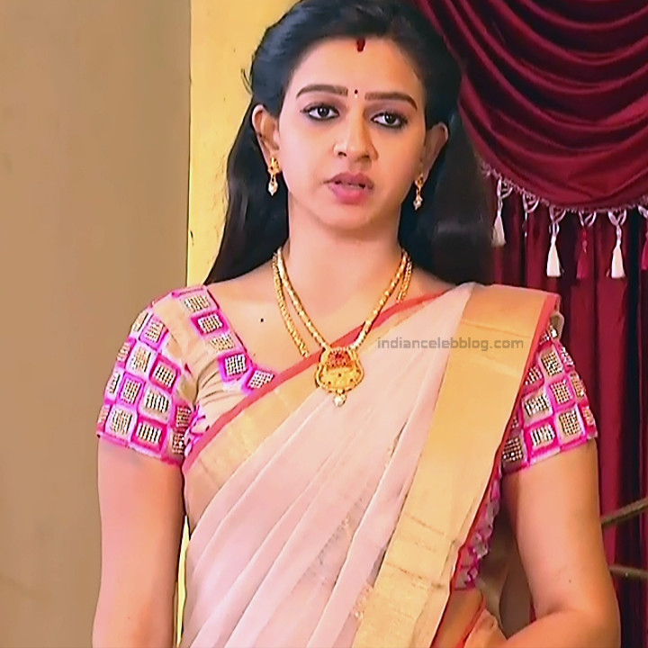 Divya_Tamil TV Actress SMG-S2_1_Saree photo