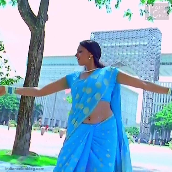 Hema_Tamil Actress_5_Hot Saree Pics