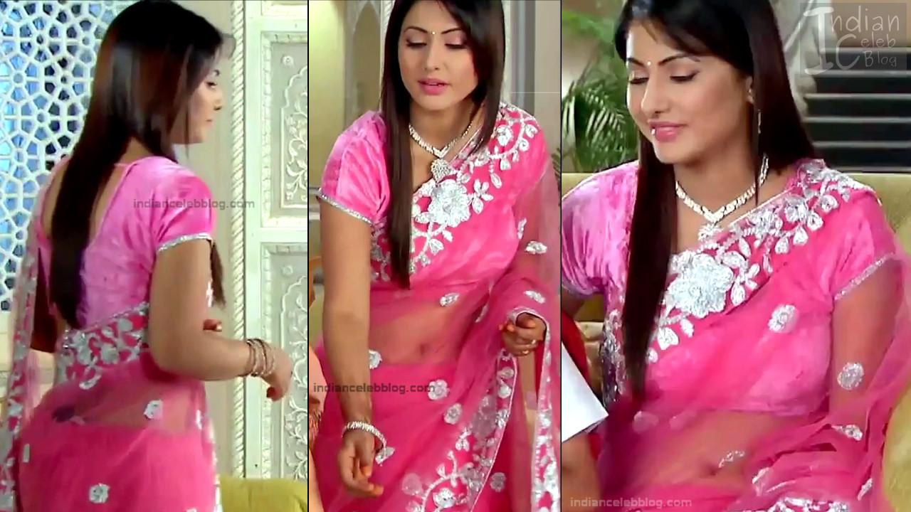 Hina Khan_Hindi TV Actress_11_Hot Sari photos