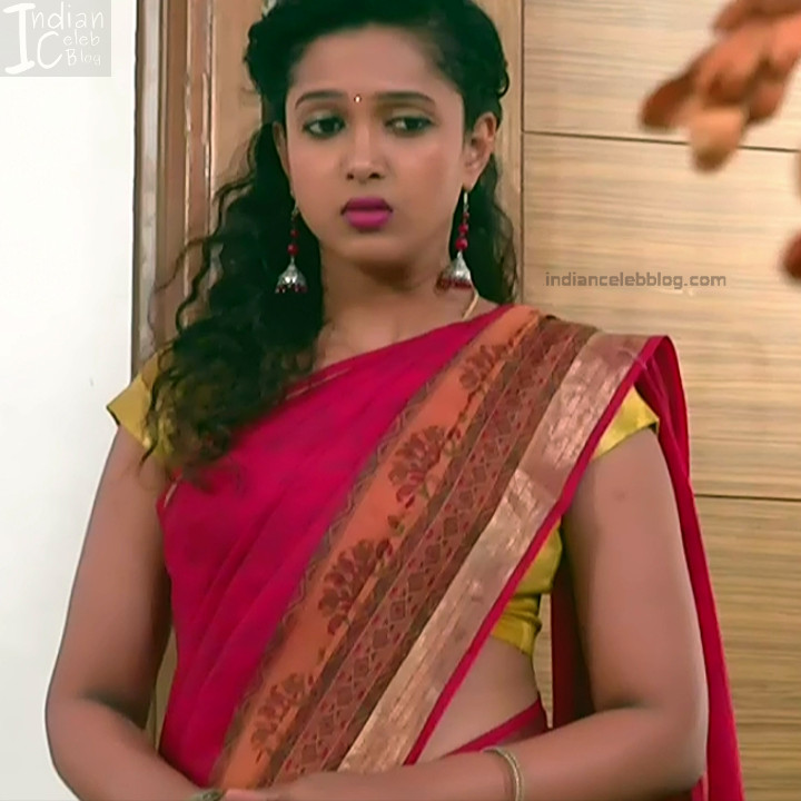 Kannada TV Actress Gallery 2_15_Hot saree pics