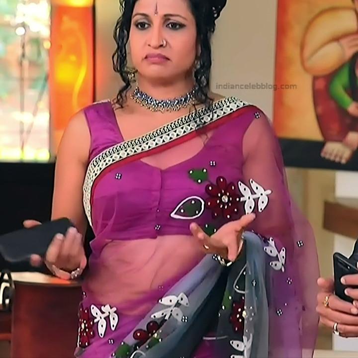 Kannada TV Actress_Comp 1 Mature_11_Hot Saree photos