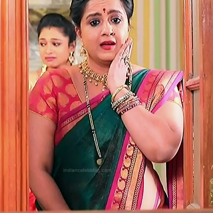 Kannada TV Actress_Comp 1 Mature_15_Hot Saree photos