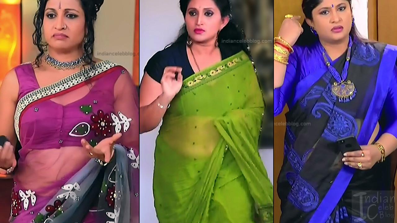 Kannada TV Actress_Comp 1 Mature_19_Hot Saree Thumb
