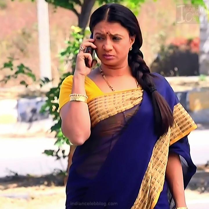 Kannada TV Actress_Comp 1 Mature_1_Hot Saree photos