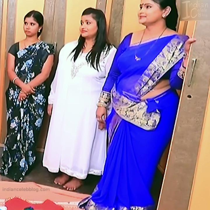 Kannada TV Actress_Comp 1 Mature_5_Hot Saree photos