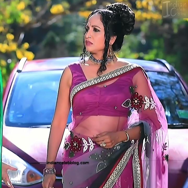 Kannada TV Actress_Comp 1 Mature_8_Hot Saree photos