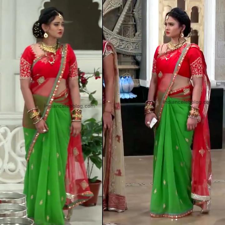Neha Dangal_Hindi TV Actress TumhiHBST-S1_12_Hot Saree pics