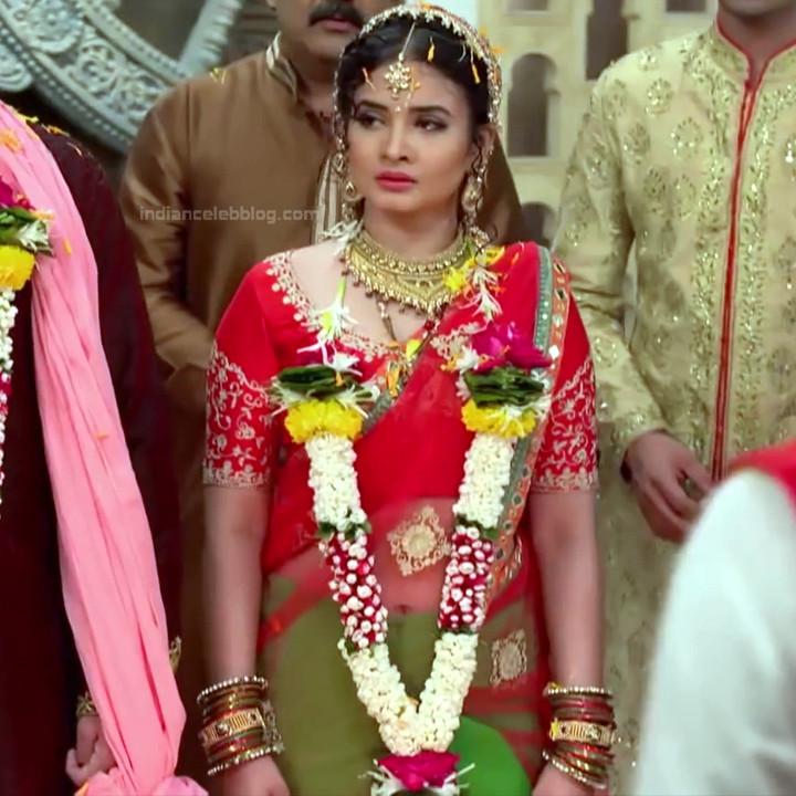 Neha Dangal_Hindi TV Actress TumhiHBST-S1_14_Hot Saree pics