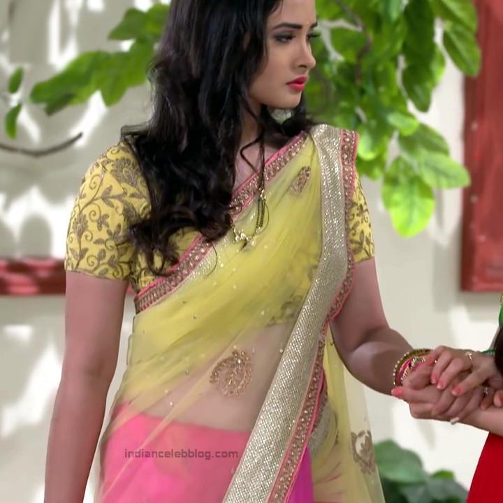 Neha Dangal_Hindi TV Actress TumhiHBST-S1_6_Hot Saree pics