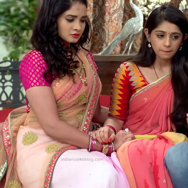 Neha Dangal_Hindi TV Actress TumhiHBST-S1_8_Hot Saree pics