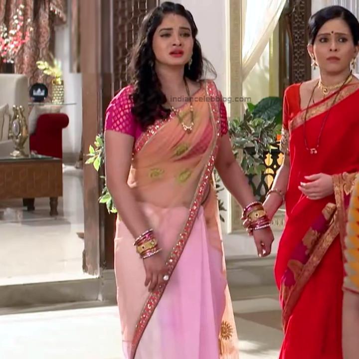 Neha Dangal_Hindi TV Actress TumhiHBST-S1_9_Hot Saree pics