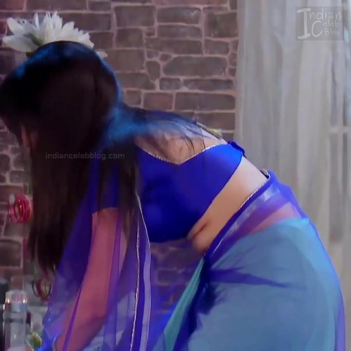 Shrenu Parikh_Hindi TV Actress - Hot Saree Pics S1_11