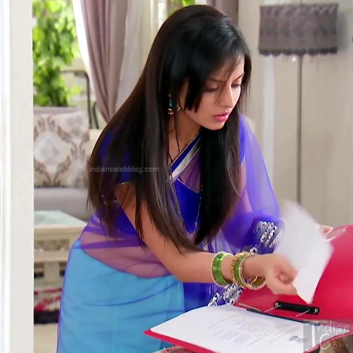 Shrenu Parikh_Hindi TV Actress - Hot Saree Pics S1_3