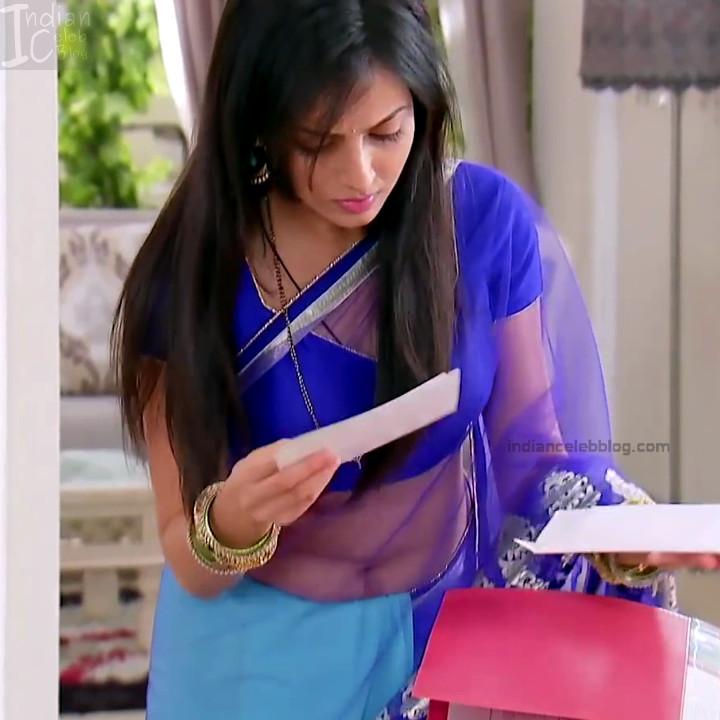 Shrenu Parikh_Hindi TV Actress - Hot Saree Pics S1_4