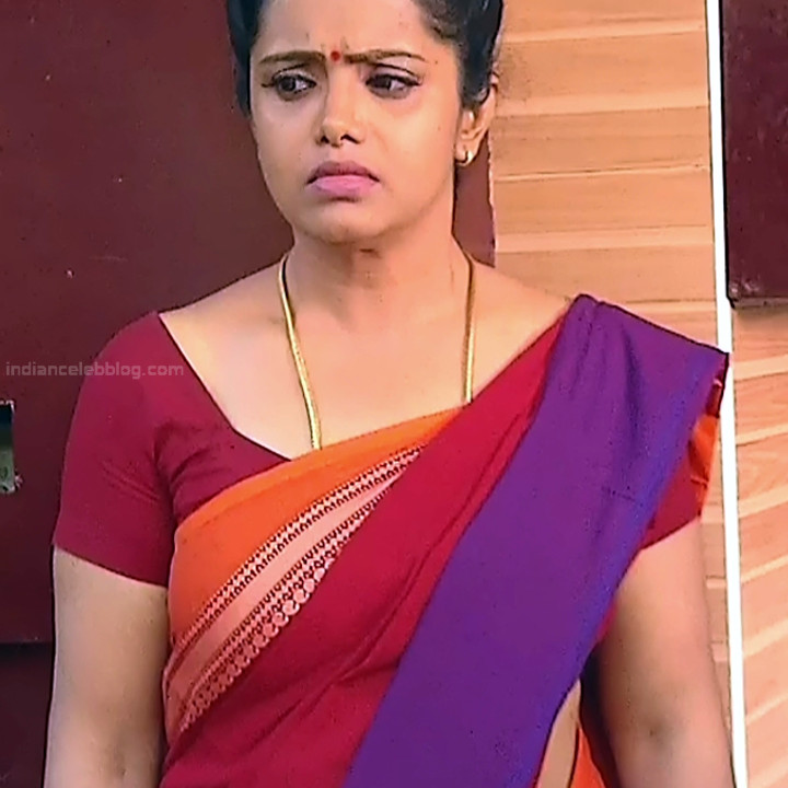 Sudha Tamil TV Actress Mahalakshmi S2 13 Hot Saree Photos