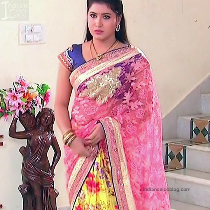 Telugu TV Actress Compilation S1_11_Hot Saree photos