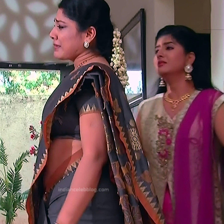 Telugu TV Actress MCmplS3 Mature 13 Hot Saree pics