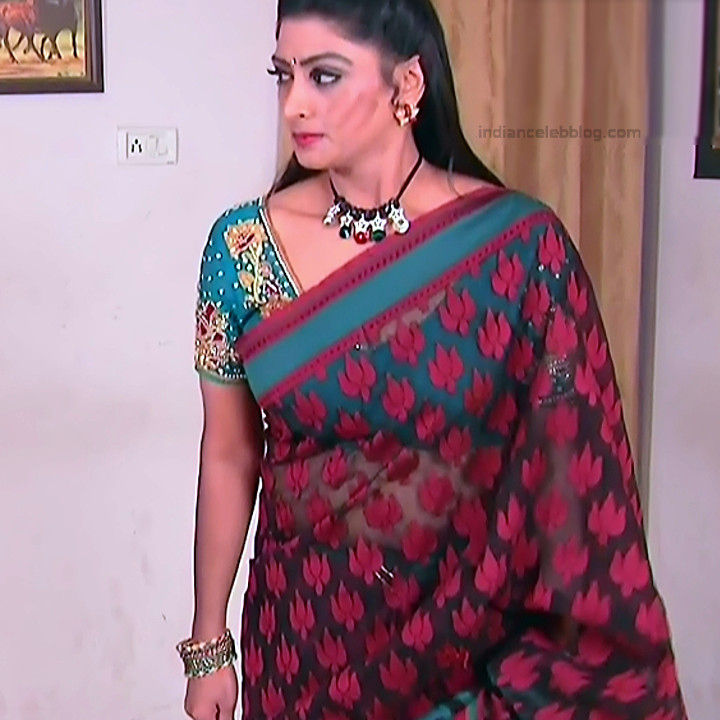 Telugu TV Actress MCmplS3 Mature 14 Hot Saree pics