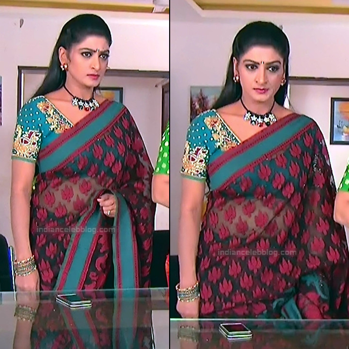 Telugu TV Actress MCmplS3 Mature 15 Hot Saree pics