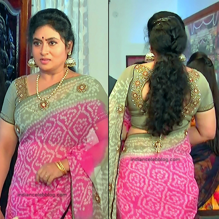 Telugu TV Actress MCmplS3 Mature 16 Hot Saree pics
