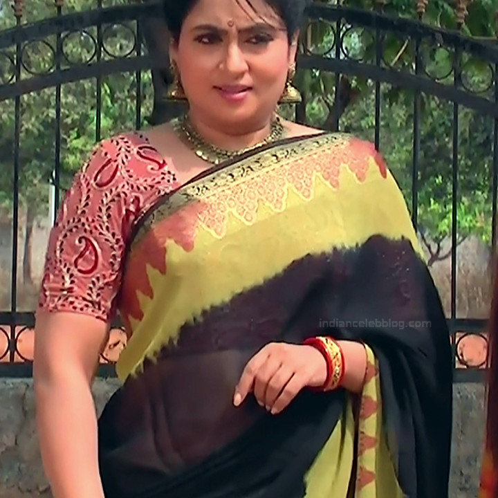 Telugu TV Actress MCmplS3 Mature 19 Hot Saree pics