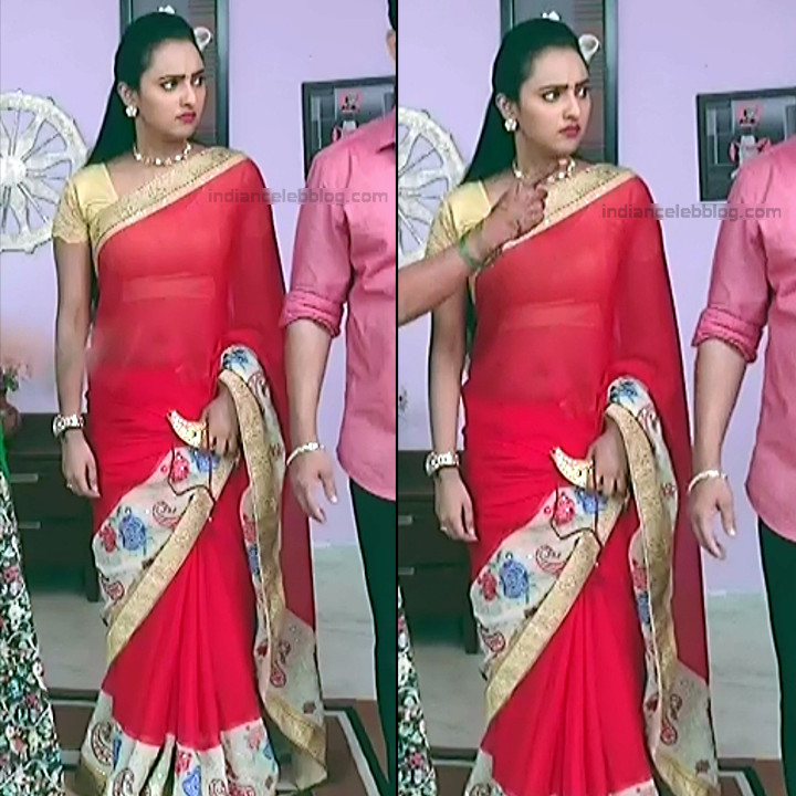 Telugu TV Actress_MCmplS2_12_Hot saree photo