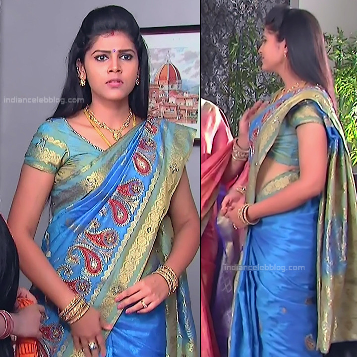 Telugu TV Actress_MCmplS2_16_Hot saree photo