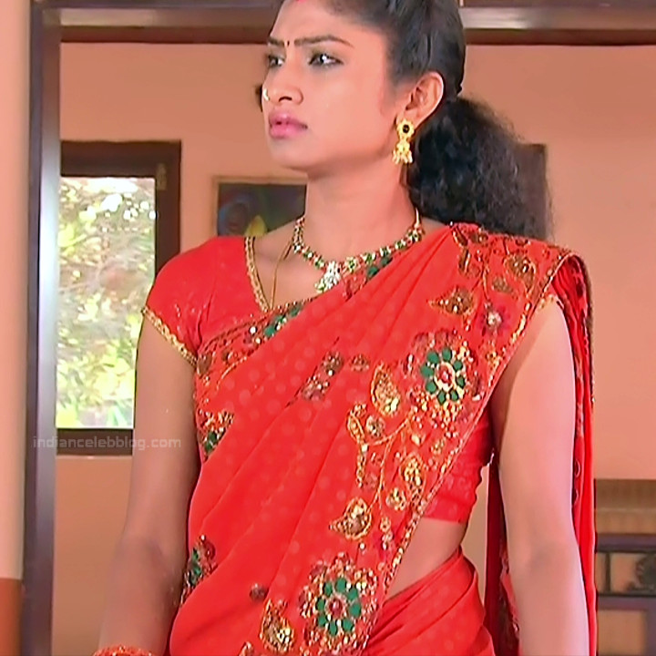 Telugu TV Actress_MCmplS2_19_Hot saree photo