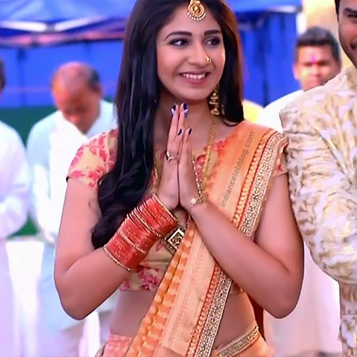 Vidhi Pandya_Hindi TV Actress Ud-S2_12_Hot saree pics