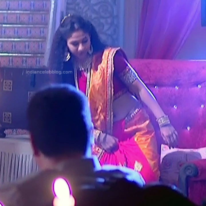 Vidhi Pandya_Hindi TV Actress Ud-S2_14_Hot saree pics