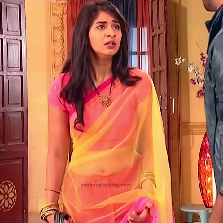 Vidhi Pandya_Hindi TV Actress Ud-S2_1_Hot saree pics