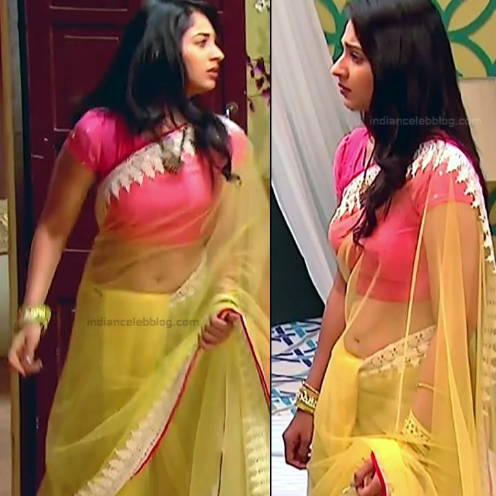 Vidhi Pandya_Hindi TV Actress Ud-S2_3_Hot saree pics