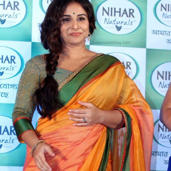 Vidya Balan_Bollywood Actress Event Pics - S1_10_Hot Saree