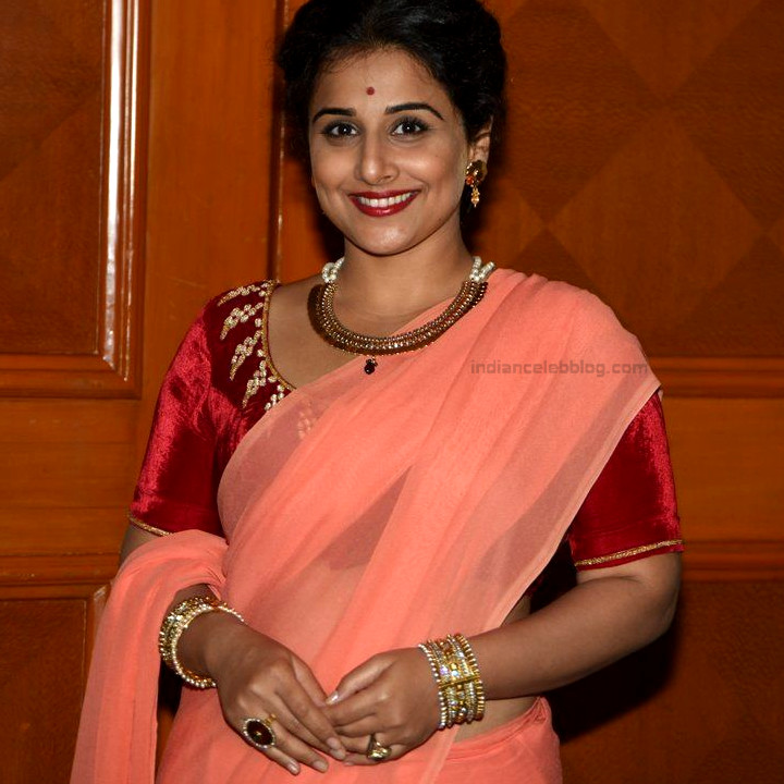Vidya Balan_Bollywood Actress Event Pics - S1_3_Hot Saree