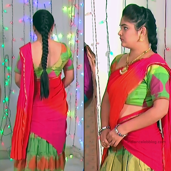Telugu TV Actress_MCmplS2_3_Hot saree photo