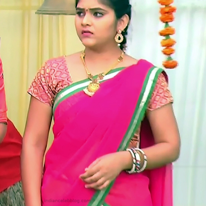 Telugu TV Actress_MCmplS2_9_Hot saree photo