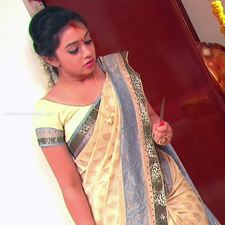 Aishwarya Meghana Telugu TV actress AgniSS2 6 hot sari pics