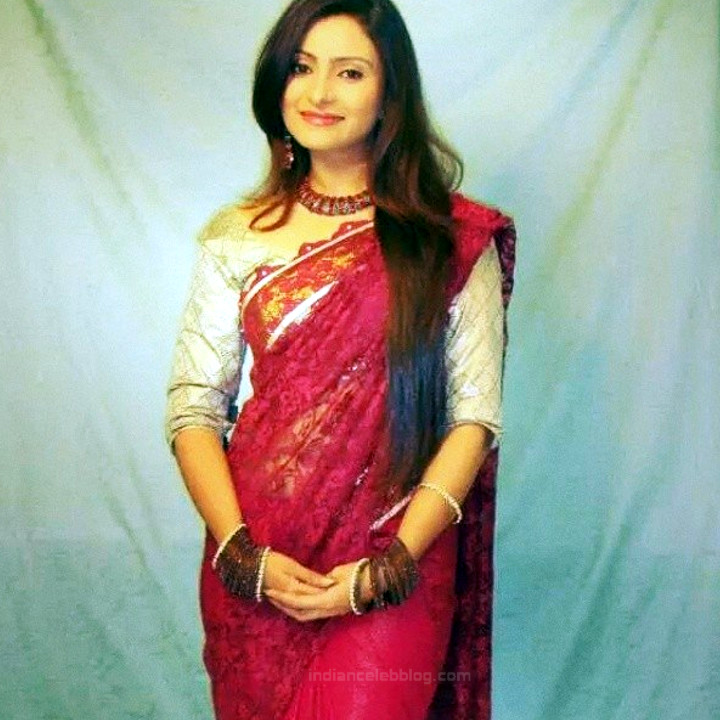 Aleeza Khan 029 Hindi TV Actress hot saree pic